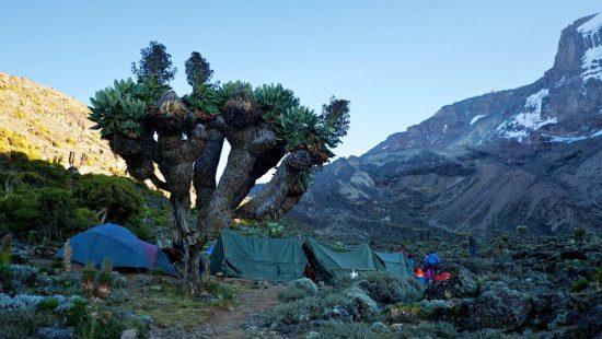 Climbing-Mount-africa